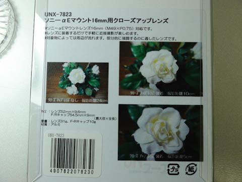 DSC00131-2.jpg