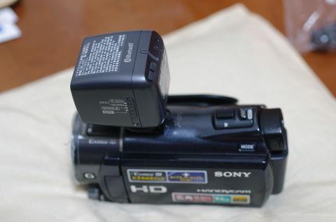 IMGP0660.JPG